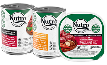 Nutro WET DOG FOOD