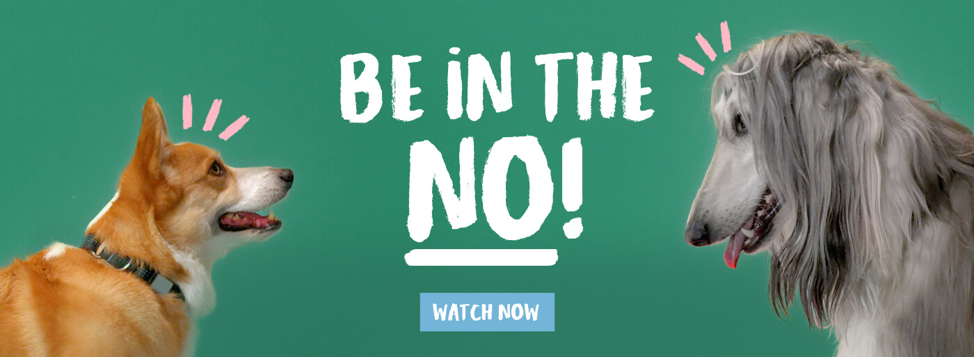 Be in the no